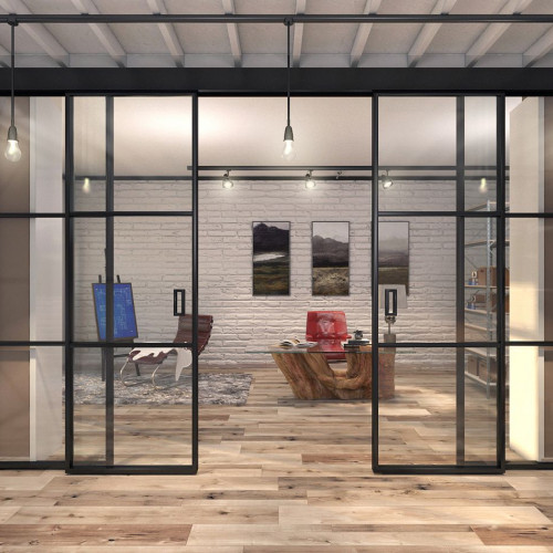 Межкомнатные откатные металлические стеклянные двери лофт